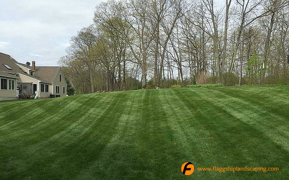 Beautifully Maintained Lawn Maine