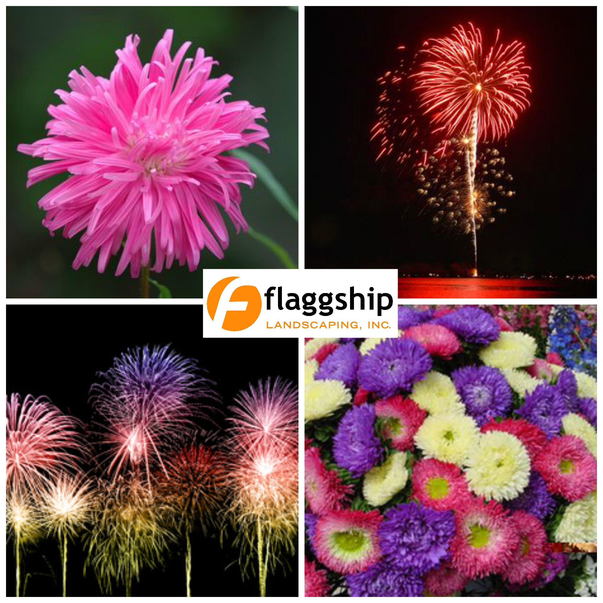 Fireworks, Flowers and Flaggship Landscaping!